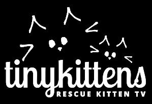 logo-white-rktv